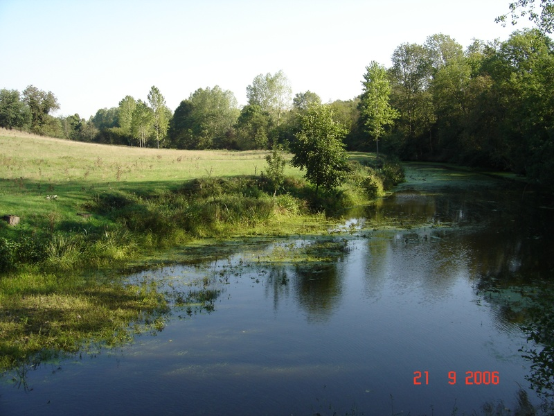 photo de la rivière en bas de la colline